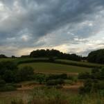 15 hectares de prairires